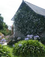 Jardin-Paysage-Ile-De-Brehat